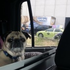 Are we there yet?