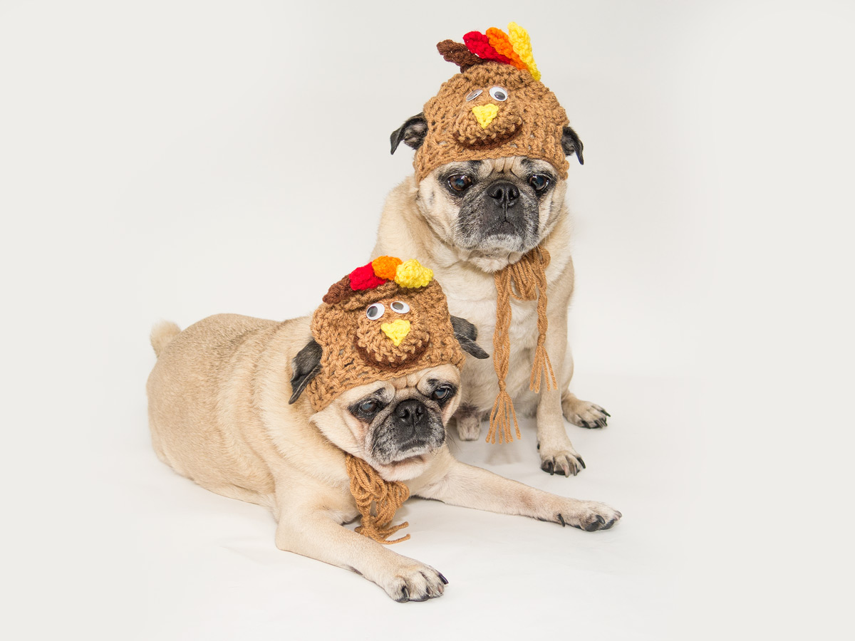 Izzie-and-Byron-turkeyhats