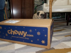 chewy - 1